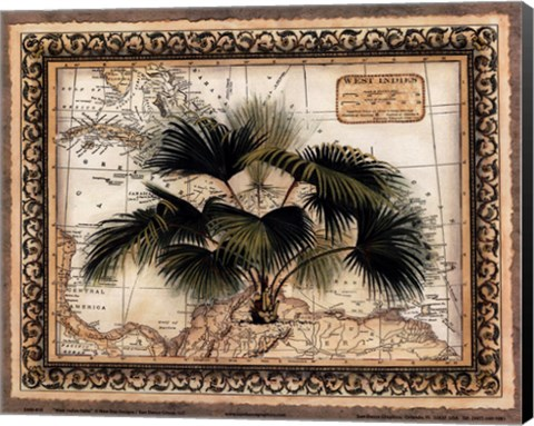 Framed West Indies Palm Print