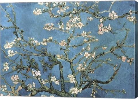 Almond Blossom 1890 Fine Art Print By Vincent Van Gogh At Canvasgalleryart Com