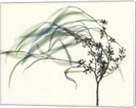 Wind Fine-Art Print