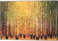Aspen Glow Fine-Art Print