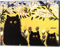 Three Black Cats Fine-Art Print