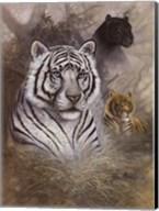 Serengeti Predator Fine-Art Print