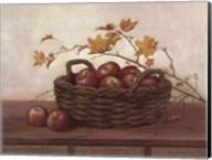 Winesap and Maples Fine-Art Print