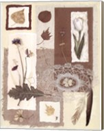Garden Notes II Fine-Art Print