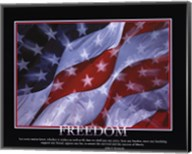 Patriotic-Freedom Fine-Art Print