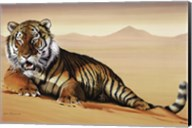Tiger In Sand Fine-Art Print