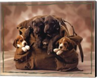 Puppies Fine-Art Print