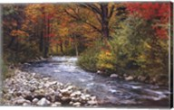 Autumn Leaves Wall Poster