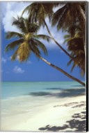 Tropical Beach Wall Poster