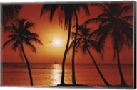 Caribbean Sunset Wall Poster