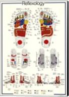 Reflexology Fine-Art Print