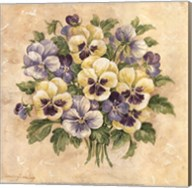 Pansies Fine-Art Print