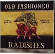 Old Fashioned Radishes Fine-Art Print