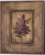 Grand Savin Lilac Fine-Art Print
