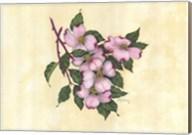Spring Dogwood I Fine-Art Print