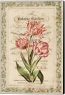 Botanic Garden Fine-Art Print