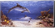 Dolphin World Fine-Art Print