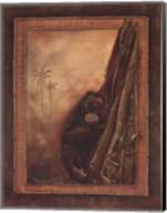 Orangutan II Fine-Art Print