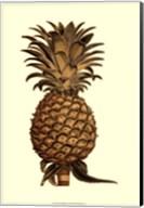 Sepia Pineapple (H) I Fine-Art Print