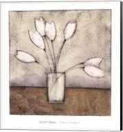 Tulipa Group I Fine-Art Print