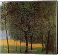 Orchard, c.1916 Fine-Art Print