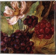 Red Berries And Blossom Fine-Art Print