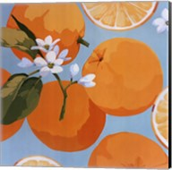 Fresh Oranges Fine-Art Print