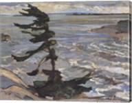 Stormy Weather, Georgian Bay Fine-Art Print