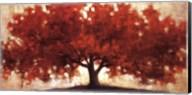 Spreading Crimson Fine-Art Print