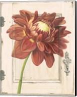 Dahlia Door Fine-Art Print