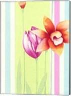 Flowers & Stripes I Fine-Art Print