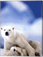 Polar Bear And Baby Fine-Art Print