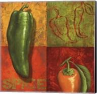 Chili IV Fine-Art Print