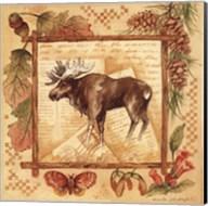 Moose - square Fine-Art Print