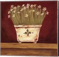 Petit Fleur III Fine-Art Print