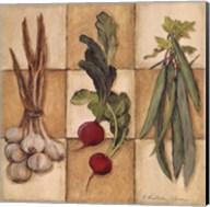 Fresh Veggies II Fine-Art Print