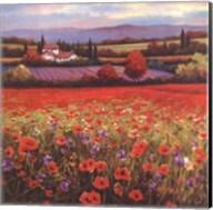 Poppy Pastures I Fine-Art Print