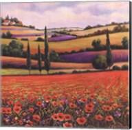 Fields of Poppies I Fine-Art Print