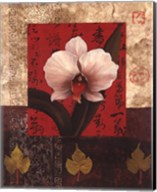 White Chinese Orchid Fine-Art Print