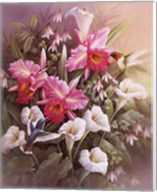Hummingbirds With Lilies Fine-Art Print