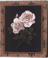 Rose Fleur De Lis Fine-Art Print