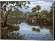 Three Cranes Swamp Fine-Art Print