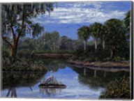 Florida Wetlands Fine-Art Print