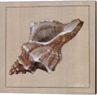 Neptune II Fine-Art Print