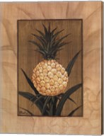 Sugar Loaf Pineapple Fine-Art Print