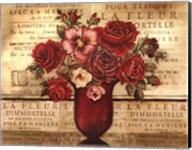 Paris Rose II Fine-Art Print