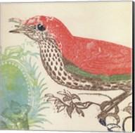 Red Bird Fine-Art Print
