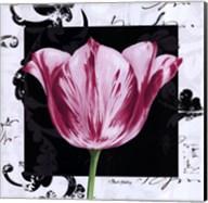 Damask Tulip I Fine-Art Print
