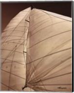 Windward Sail III Fine-Art Print