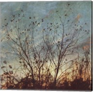 Wild Grass II Fine-Art Print
